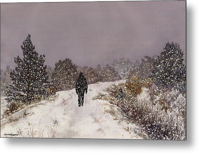 Solitude Metal Print by Anne Gifford