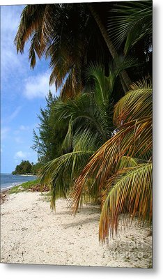 Metal Print featuring the photograph Nude Beach by The Art of Alice Terrill