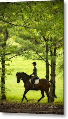 Metal Print featuring the photograph Solitude by Joan Davis
