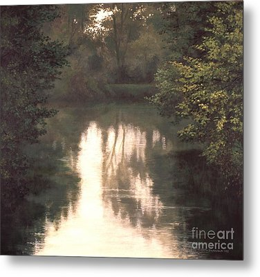 Solitude Metal Print by Michael Swanson