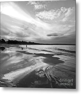 Solitude Metal Print by Nicole Doyle