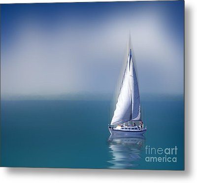Solitude Metal Print by Shirley Mangini