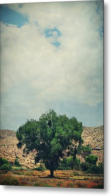 Some Days I Believe Metal Print by Laurie Search