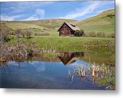 Metal Print featuring the photograph Somebody's Dream by Jack Bell
