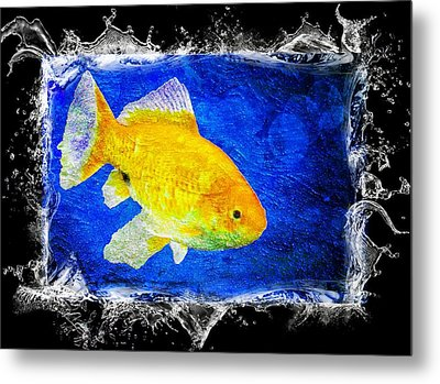 Metal Print featuring the photograph Something Fishy by Aaron Berg
