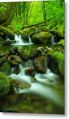 Sometimes Its Best To Sit And Dream Metal Print by Jeff Swan