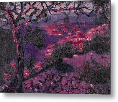 Sonora Desert Metal Print by Suzanne  Marie Leclair