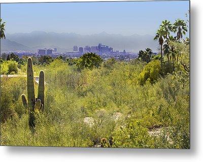 Sonoran Desert With Phoenix Skyline Metal Print