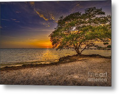 Soothing Light Metal Print by Marvin Spates