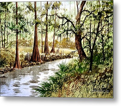 Sopchoppy River Florida Metal Print by Bill Holkham