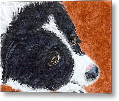 Soulful Eyes Metal Print by Fran Brooks