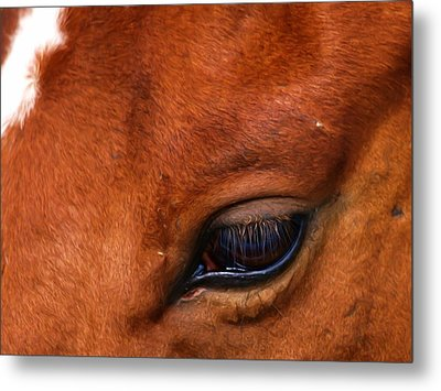 Soulful Metal Print by Tom Druin