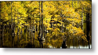Sounds Of Time Metal Print by Karen Wiles
