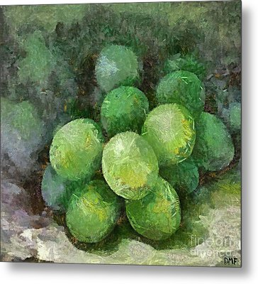Sour Grapes Metal Print by Dragica  Micki Fortuna