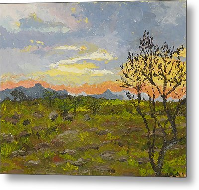South African Sunset Metal Print by Diane Arlitt
