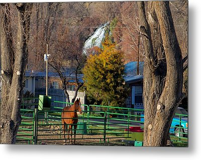 Metal Print featuring the photograph South Central Idaho Life by Michael Rogers