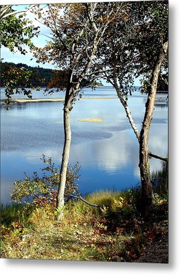 South Ingonish Afternoon Metal Print by Janet Ashworth