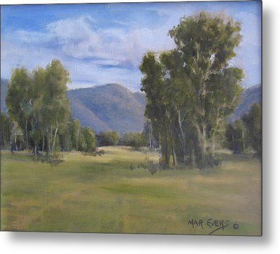 South Valley Metal Print