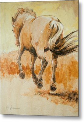 Southbound Metal Print by Tracie Thompson
