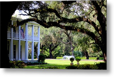 Southern Comfort Metal Print by William Tucker