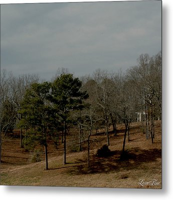 Metal Print featuring the photograph Southern Landscape by Lesa Fine
