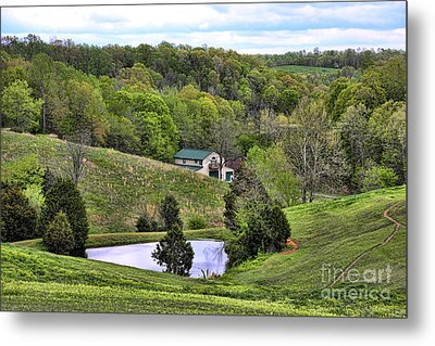 Southern Landscapes IIi Metal Print by Chuck Kuhn