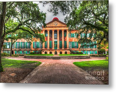 Southern Life Metal Print by Dale Powell