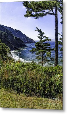 Southern Oregon Coastline Metal Print by Nancy Marie Ricketts