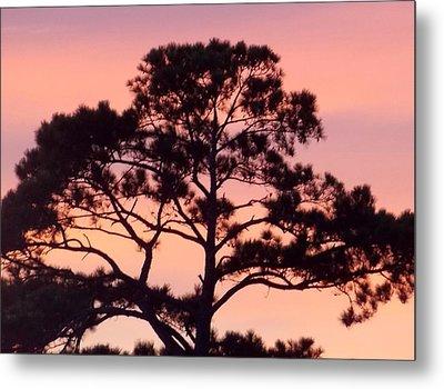 Southern Sundown Metal Print