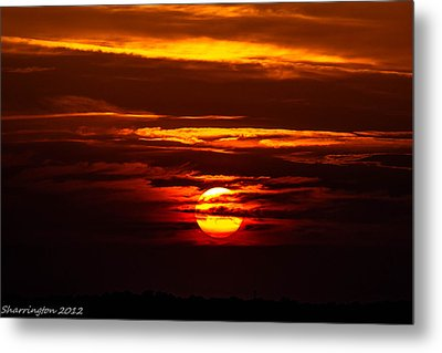 Southern Sunset Metal Print by Shannon Harrington