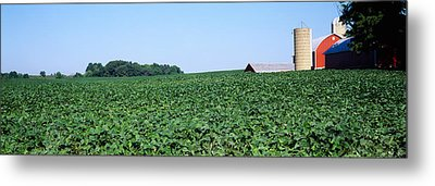 Soybean Field With A Barn Metal Print by Panoramic Images