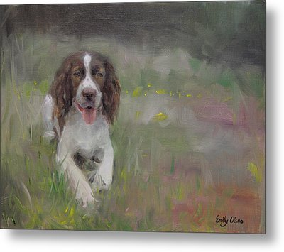 Spaniel At Rest Metal Print