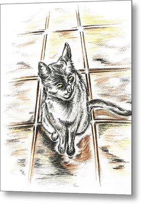 Spanish Cat Waiting Metal Print by Teresa White