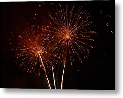 Metal Print featuring the photograph Sparkle by Linda Mishler