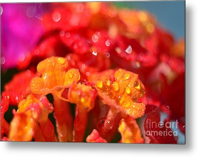 Sparkling Jeweltone Floral II Metal Print by Debbie Portwood