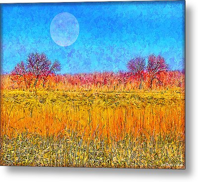Metal Print featuring the digital art Moonlight Over Fields Of Gold - Boulder County Colorado by Joel Bruce Wallach