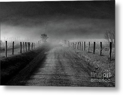 Sparks Lane In Black And White Metal Print by Douglas Stucky