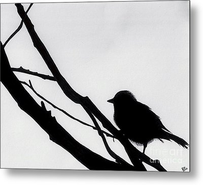 Metal Print featuring the drawing Sparrow In A Gray Sky by D Hackett