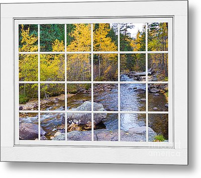 Special Place In The Woods Large White Picture Window View Metal Print
