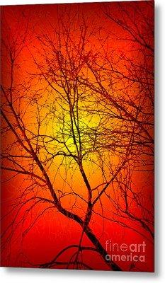Spectral Sunrise Metal Print by Tlynn Brentnall