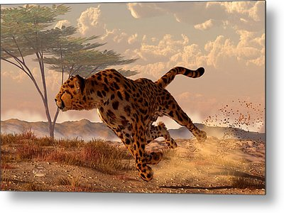 Speeding Cheetah Metal Print by Daniel Eskridge