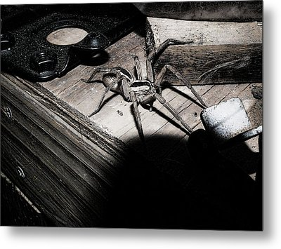 Metal Print featuring the digital art Spider B And W by Robert Rhoads