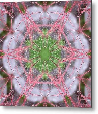 Spider Web On Smokebush Metal Print