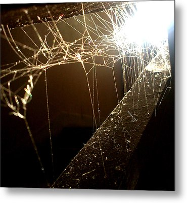 Metal Print featuring the photograph Spiderweb by Lucy D