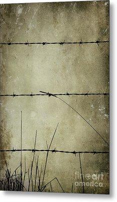 Spikey Wire Metal Print by Svetlana Sewell