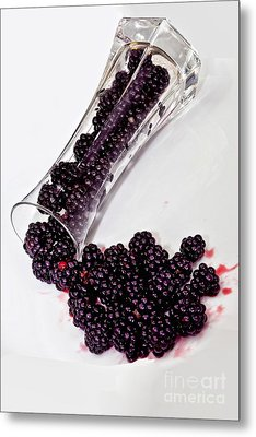 Spilt Blackberries Metal Print by Shirley Mangini