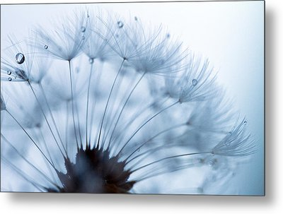 Spin Round And Round Metal Print by Rebecca Cozart