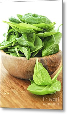 Spinach Metal Print by Elena Elisseeva