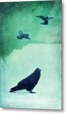 Spirit Bird Metal Print by Priska Wettstein