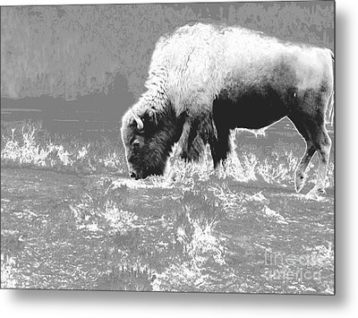Spirit Bison Metal Print by Ann Johndro-Collins